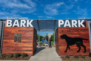 Barney Wood Bark Park Farmers Branch