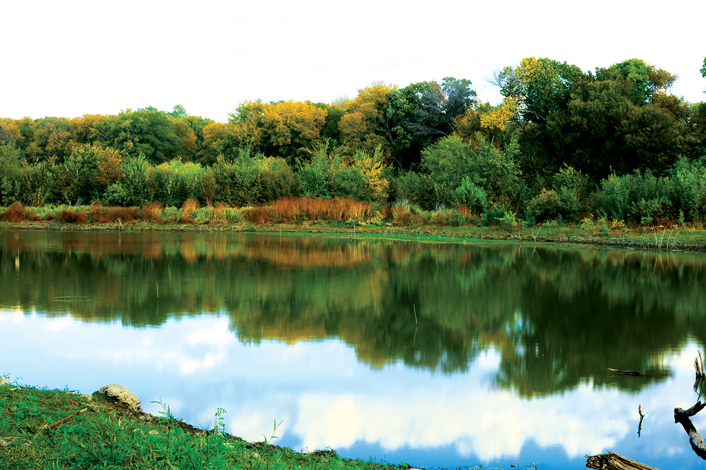 Top 10 in Farmers Branch: John F. Burke Nature Preserve