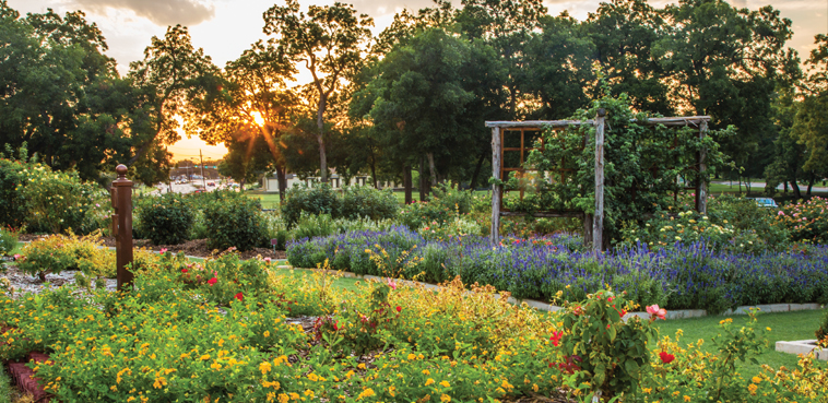 Gardens in Farmers Branch