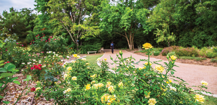 Trails & Parks in Farmers Branch