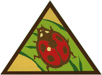 Brownie Bug Badge available at Power to the Pollinators program in Farmers Branch
